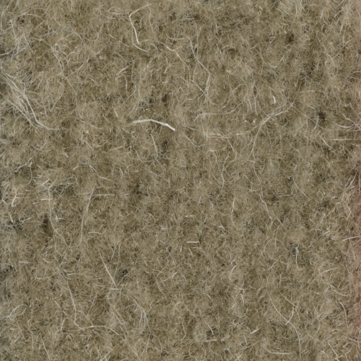 TAN ENGLISH WILTON II WOOL CARPET