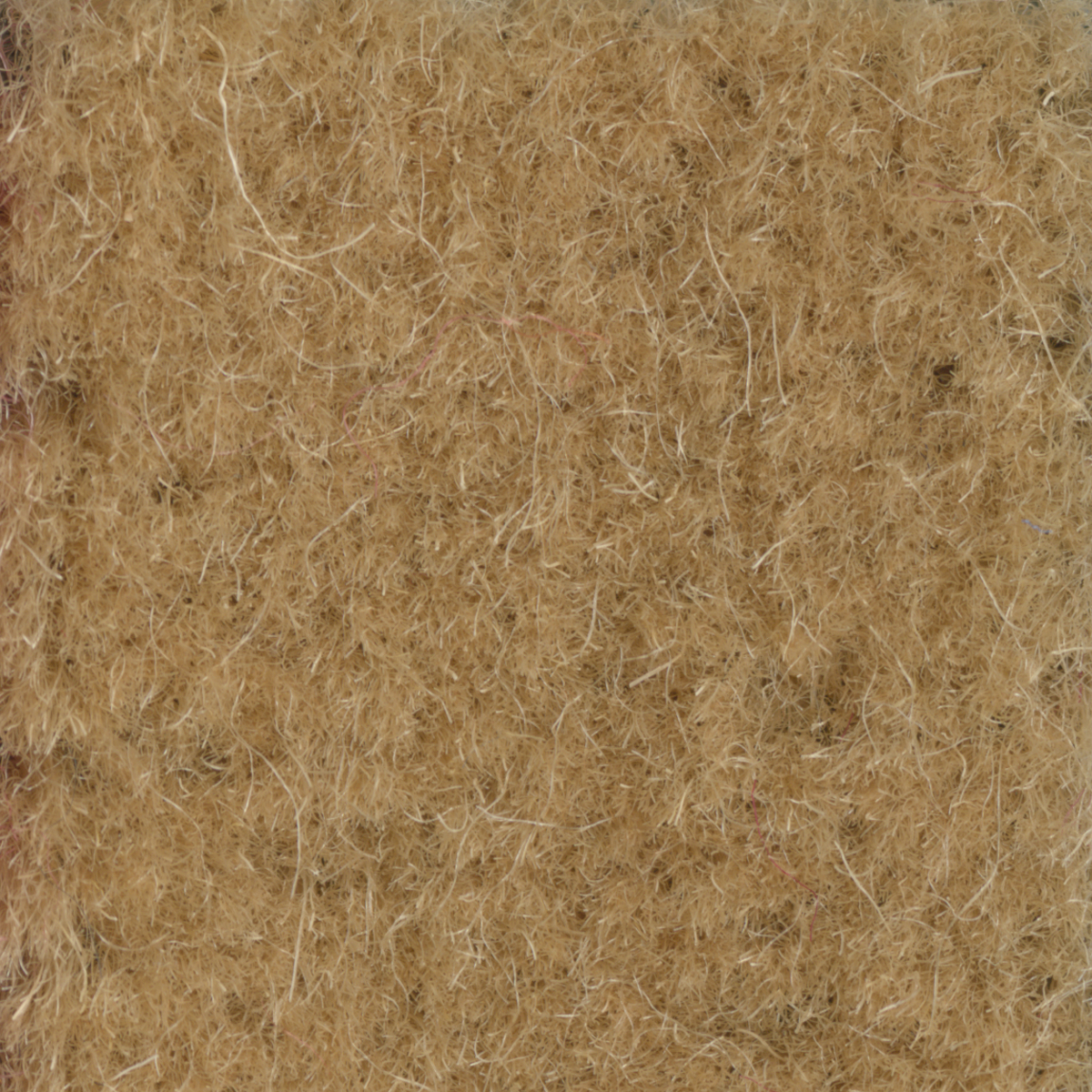 PALOMINO ENGLISH WILTON II WOOL CARPET