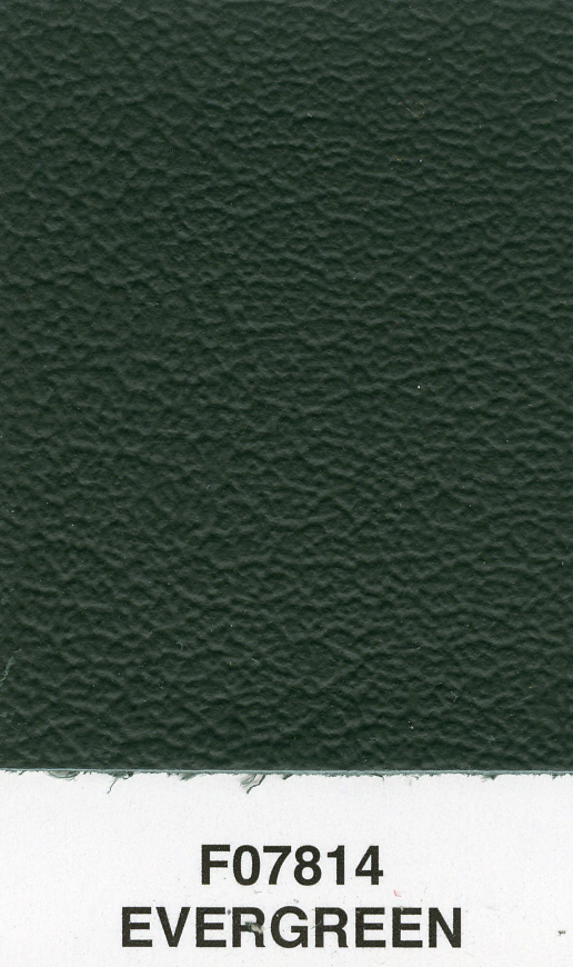 EVERGREEN RENO LEATHER