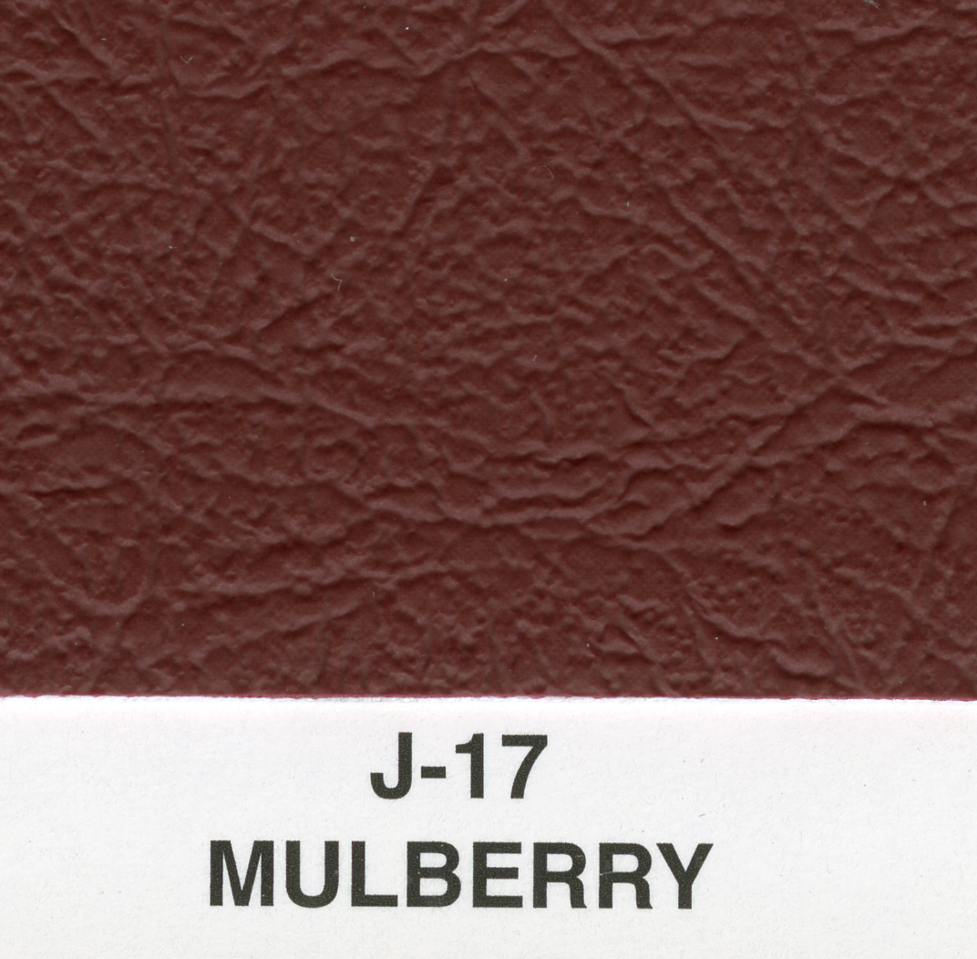MULBERRY BRITISH AMBLA VINYL